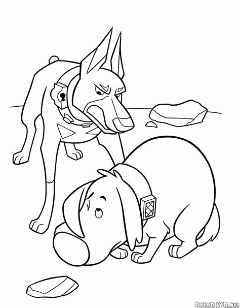 doug the pug coloring book doug from up coloring pages www imgkid the image kid has it