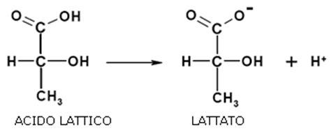 acido lattico alimentare citrato e bicarbonato contro l acidosi mauro quarta