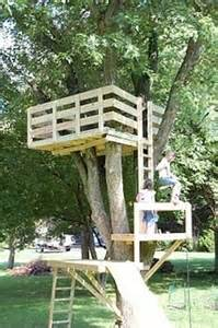 Ideas pinterest tree houses simple tree house and trees