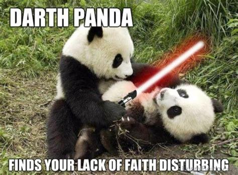 Cute Panda Memes - 80 cute panda memes