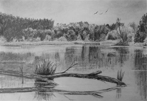 how to in water how to draw reflective water online art lessons