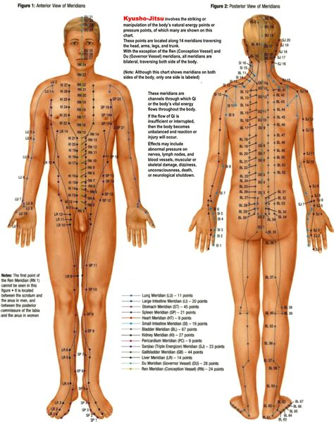 download pressure point chart 2 for free tidyform