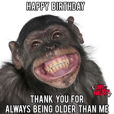Happy Birthday To Me Meme - happy birthday meme funny 30 naughty birthday memes