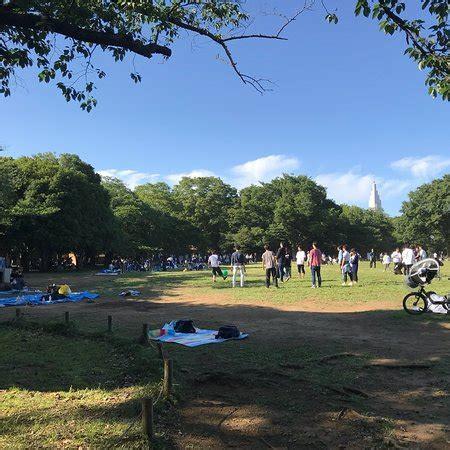 yoyogi park (shibuya) 2018 all you need to know before