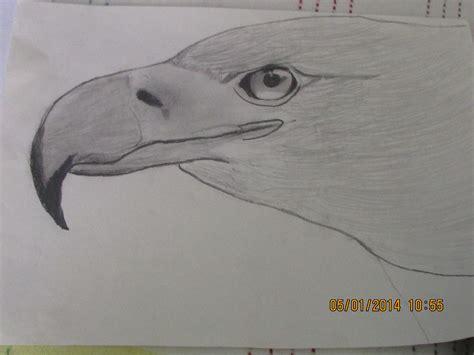 los mejores dibujos de animales los mejores dibujos el dibujo daniel daza