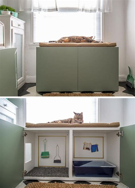 creative ideas  hiding kitty litter box