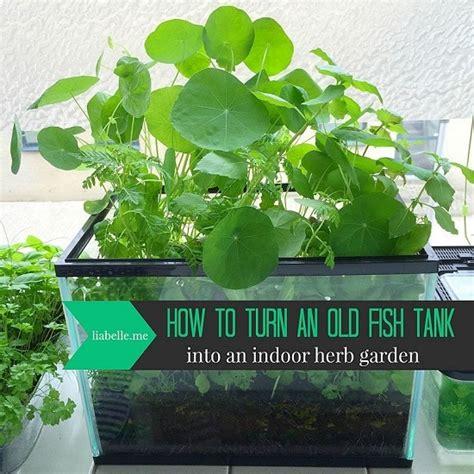 diy fish tank planter terrarium ideas balcony garden web