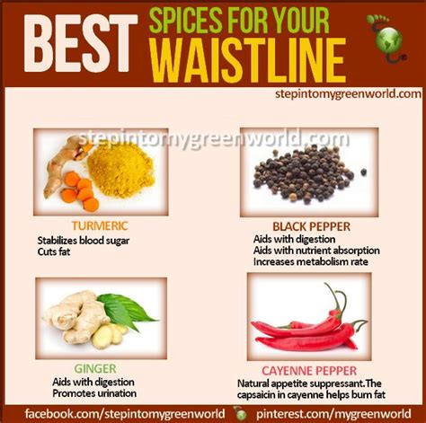 Spices For Detox by Best 25 Spices For Weightloss Ideas On