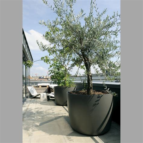 large planters for trees june 2012 modern design by moderndesign org