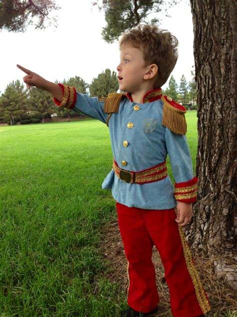 prince charming costumes costume