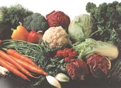 Freezing And Cooking Your Garden Vegetables Real Food Freezing Vegetables From Your Garden