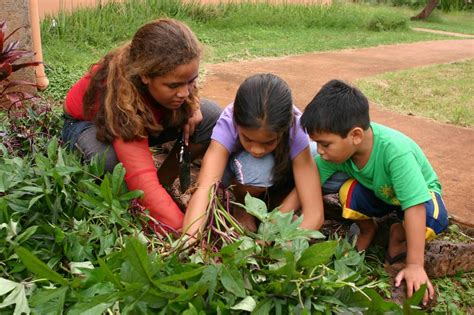 Gardening With Toddlers Teaching Responsibility Through Gardening Single Parents