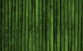 bamboo wallpaper 8626