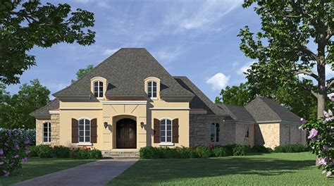 one story home design with high ceilings