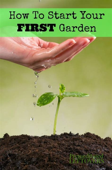 how to start a vegetable garden for beginners best 25 gardening for beginners ideas on pinterest