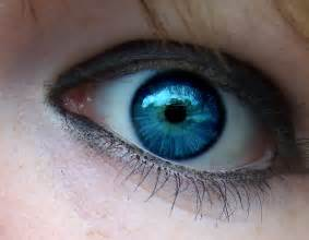 genetics of eye color blue inquisition