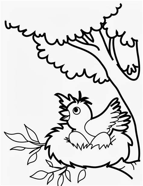 coloring pages of birds for toddlers bird coloring pages for preschoolers coloring home