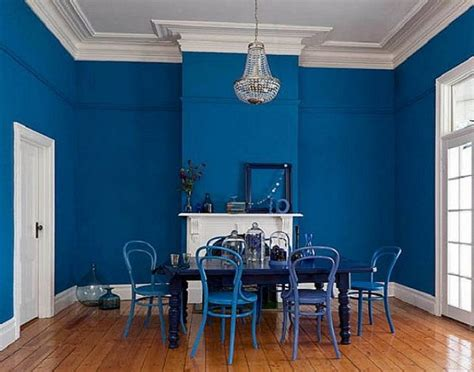 bold blue interior paint color for dining room living