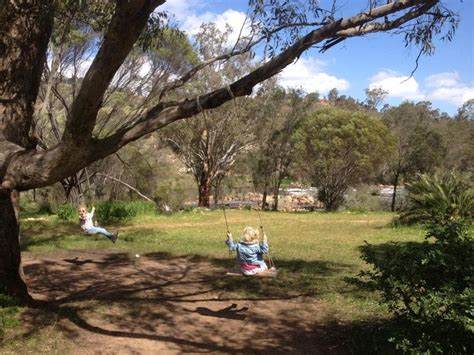 tree swings australia 62 best 100 school holiday ideas for things to do in perth