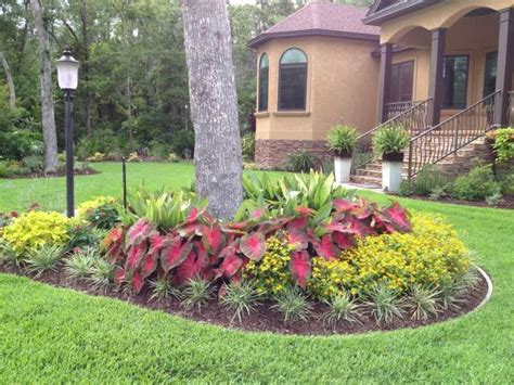 Garden Ideas Around Trees Quot Flash Quot Caladiums And Melodium Landscaping Pinterest