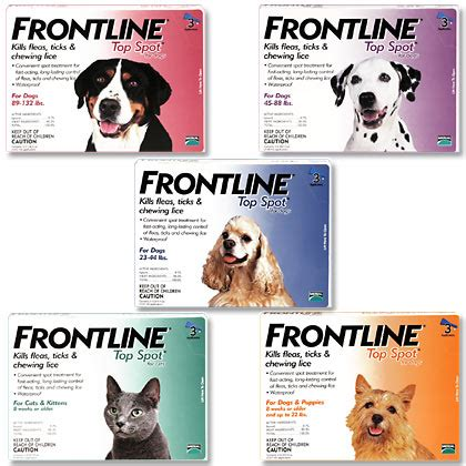 frontline spot on top for dogs soi dogs cats and fleas plants pets vets in thailand thailand visa forum by