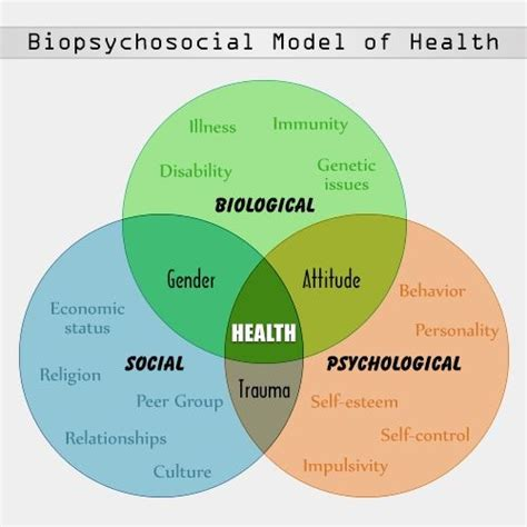 Social Model Detox And Mainecare by A General Overview Of The Biopsychosocial Model With A