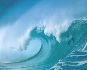 la vie les vagues de l oc 233 an