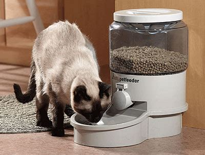 small autopetfeeder | automatic robot pet feeder robotshop