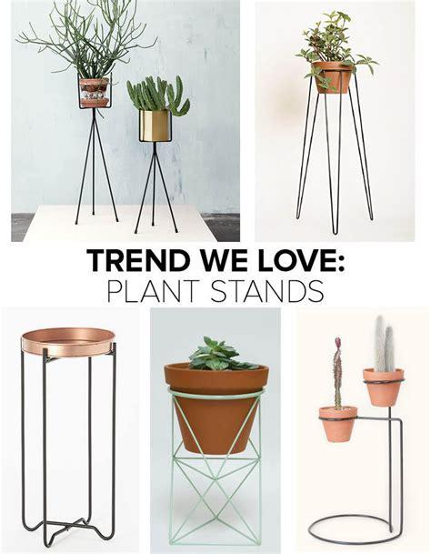indoor plant displays flower pots garden trends trend we love plant stands plants gardens and indoor