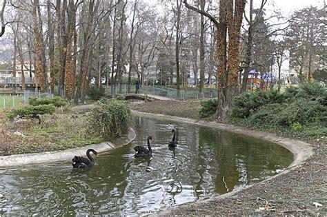 parco bergamo parco locatelli foto giorno bergamo