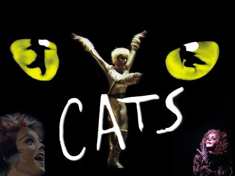 cats musical cats review blackpool mcdonald radio by