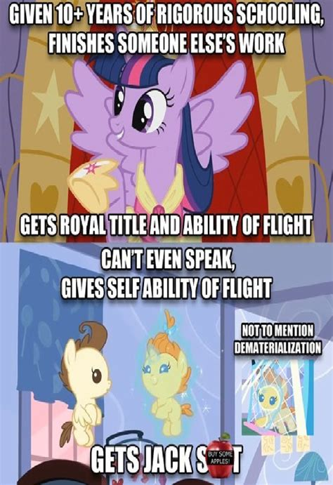 Mlp Fim Meme - mlp fim logic on everyone by newsuperdannyzx on deviantart