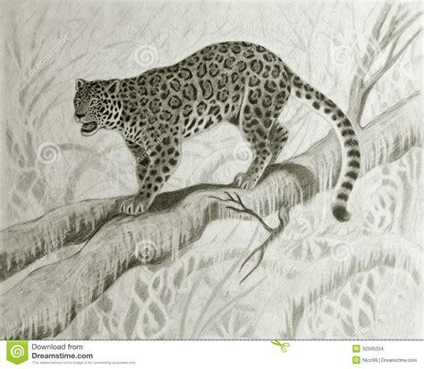 imagenes de jaguares para dibujar jaguar en el 225 rbol