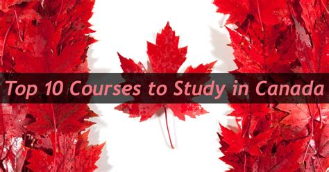 Study In Canada After Mba by Top Courses To Study In Canada For International Students
