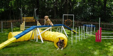 agility course agility kennedy school