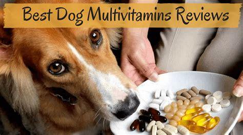 best multivitamin for dogs best multivitamins reviews of 2018 top pet vitamins