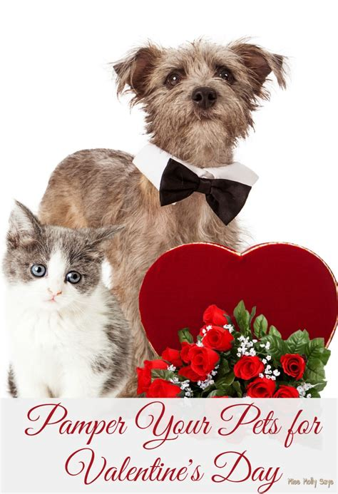 pet valentines per your pets for s day miss molly says