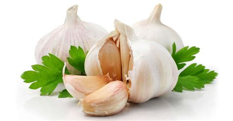 Garlic Mercury Detox by Garlic Could Save Your S Choice Nutrition Center