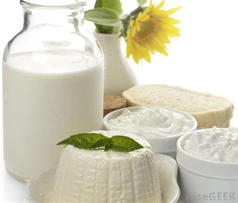 lactose intolerance cottage cheese is there lactose in cottage cheese with pictures