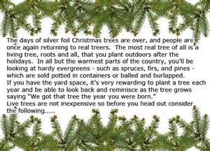live christmas trees make memories