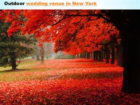 outdoor wedding venues central new york central park wedding new york