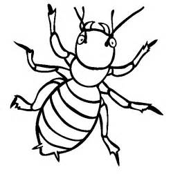 insect coloring pages insect animal coloring pages ideas coloring pages