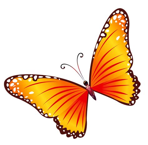 free butterfly clipart butterflies images clip cliparts co