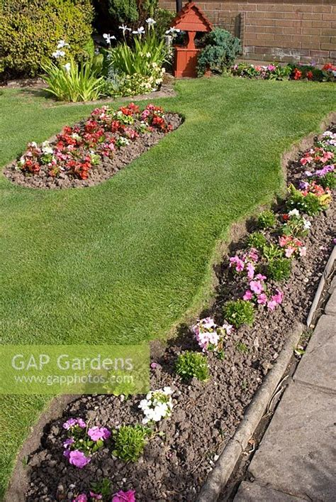 Feature Plants For Front Garden gap gardens front garden with bedding plants in narrow