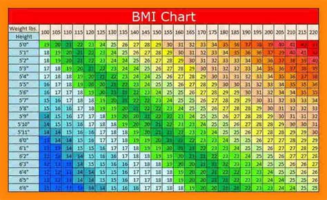 bmi table for bmi chart of printable and chart