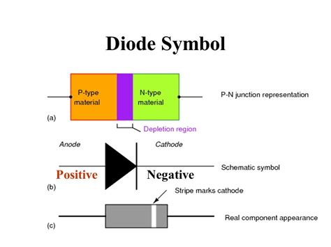 diode types ppt diodes transistors and ppt