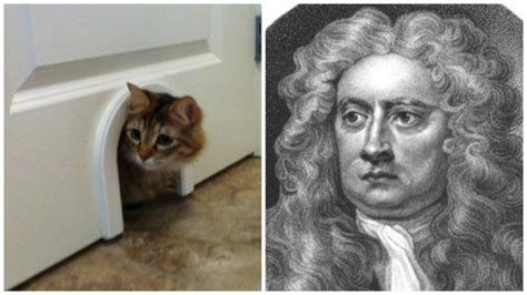 Who Invented The Cat Door by Isaac Newton Friend Of Felines Commonplace Facts