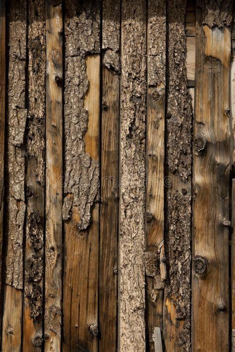 grungy wood barn board wall texture royalty  stock