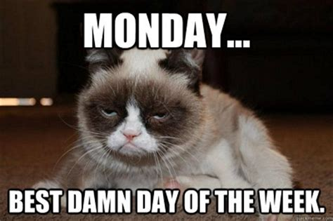 Monday Meme Images - the 50 best monday memes memes about monday