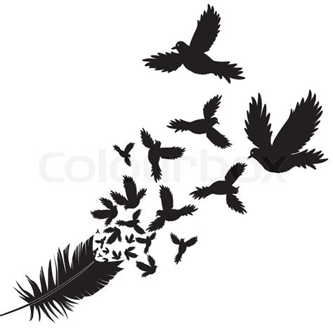 feather tattoo vector pin feder on tumblr on pinterest
